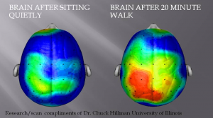 brain walking